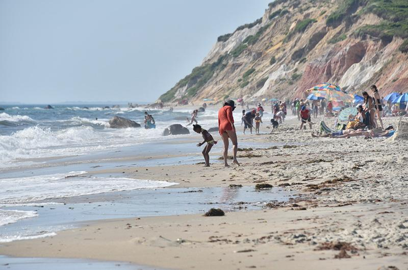 Marthas Vineyard Moshup Beach.jpg photo - Bill Ewart Jr