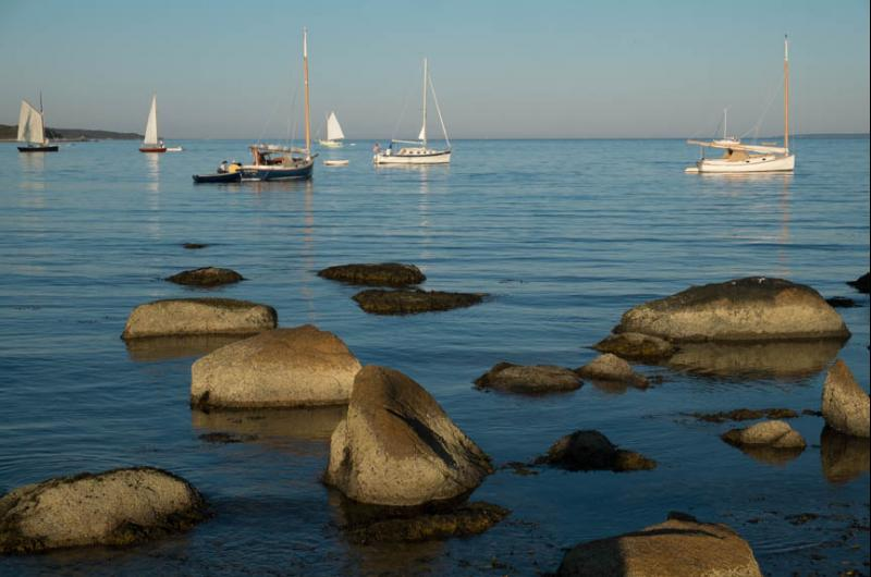 vineyard haven cougars dating site Edgartown is a walking town with a compact village center, but the town itself is a total of 35 square miles it contains miles of waterfront, either on the beaches, harbor or.