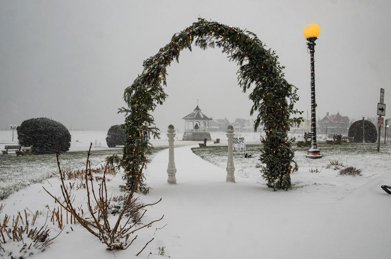 Christmas Light Snow Flurries Machine