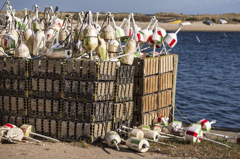 Lobster pots, Oak Bluffs harbor.